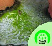 6-Algae-Resist105x95-170x150